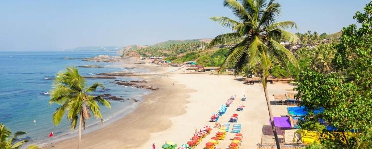 Luxury Properties in Goa